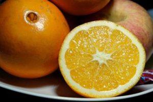 脐橙商家借力学校图示
